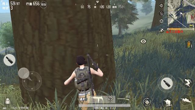 木の後ろに隠れる